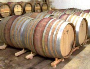 Domain Arnesque 300x230 Domaine de lArnesque Chateauneuf du Pape Rhone Wine, Complete Guide