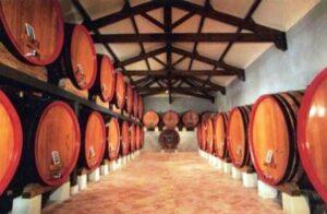 Cave Saint Pierre1 300x196 Maison Bouachon Chateauneuf du Pape Rhone Wine, Complete Guide