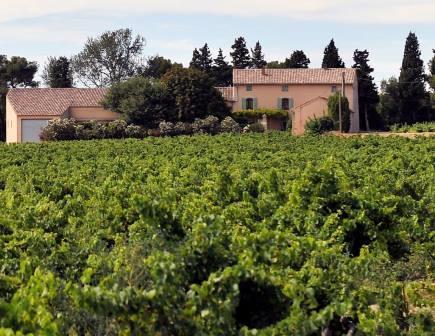 Domaine de Panisse Domaine de Panisse Chateauneuf du Pape Rhone Wine, Complete Guide
