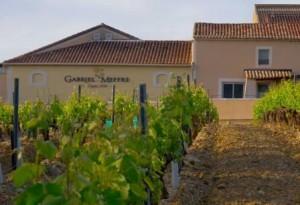 Gabriel Meffre 300x205 Maison Gabriel Meffre Chateauneuf du Pape Rhone Wine, Complete Guide