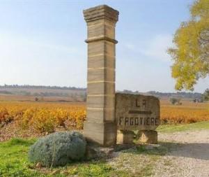 La Fagotiere 300x253 La Fagotiere Chateauneuf du Pape Rhone Wine, Complete Guide