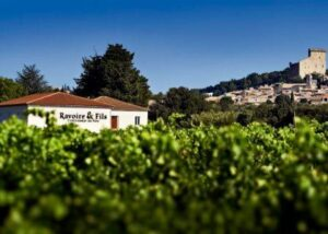 Olivier Ravoire 300x214 Olivier Ravoire Chateauneuf du Pape Rhone Wine, Complete Guide