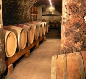 Domaine Duclaux Cote Rotie 300x274 Benjamin et David Duclaux Cote Rotie Rhone Wine, Complete Guide