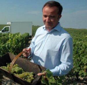 Haut Brion Harvest Delmas1 300x294 2015 Pessac Leognan Ratings Tasting Notes, Tips on Best Wines to Buy!