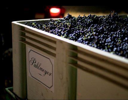 Pahlmeyer Winery