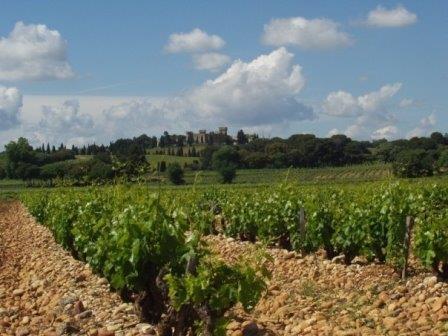 Cotes du Rhone Appellation Cotes du Rhone Appellation Rhone Valley Wine The Complete Guide