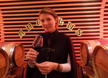 Angelus Stephane de Bouard 2013 St. Emilion Wines, Tasting Notes, Comments, Images and Reviews