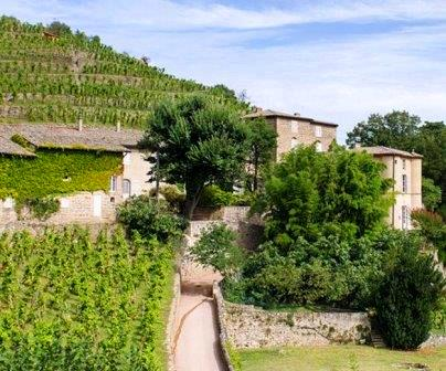 Chateau Grillet Chateau Grillet Rhone Valley Wine