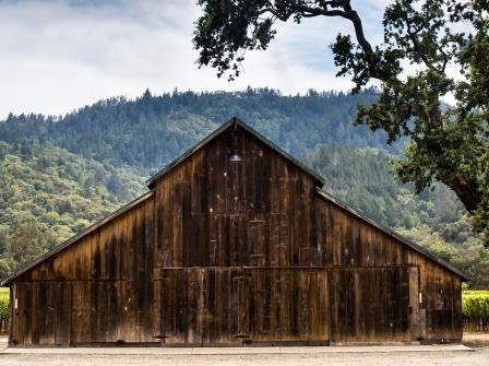 Ulysses Estate Napa Valley Cabernet Sauvignon Ulysses Napa Valley California Cabernet Sauvignon Wine