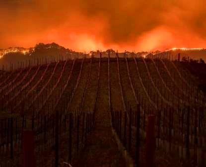 Napa Valley Wild Frie Raging Fires Burning through Napa Valley and Sonoma County