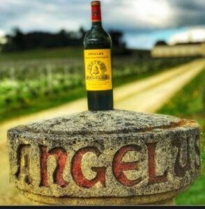 2017 Angelus Saint Emilion 294x300 2017 Saint Emilion Tasting Notes Ratings Harvest info for all the Best Wines