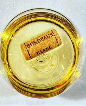 2019 White Bordeaux Wines Complete Guide Tasting Notes Scores