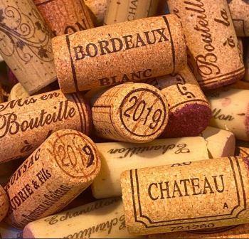 2019 Bordeaux Wine Tasting 2019 Cotes de Bordeaux Guide to the Best Wines Tasting Notes Scores