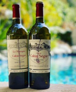 2020 Calon Segur 247x300 Best 2020 Saint Estephe Wine Tasting Notes, Ratings, Harvest Reports