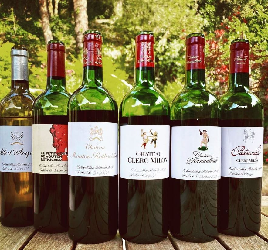 Best 2020 Pauillac Wine Tasting Notes, Ratings, Harvest Reports